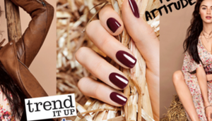 Neues Insider Trend itUp