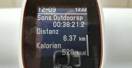 Polar M430 Trainingsdaten