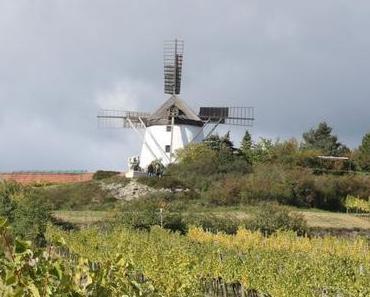 Retz im Weinviertel – Wein- und Genussreise