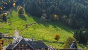 Gemütliche Herbstwanderung Einkehr: Kreuzweg Kälbelescheuer Haldenhof zurück