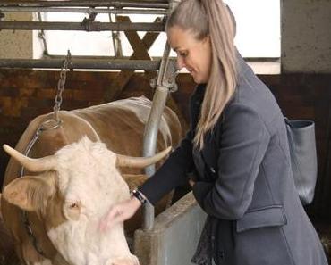 """Mootral – klimafreundliche Kühe und kostenlose Burger - + + + gratis Burger am 18.10.2017 ++ Klimawandel - Retter """"Kuh"""" ++ Was steckt dahinter? + + +"""