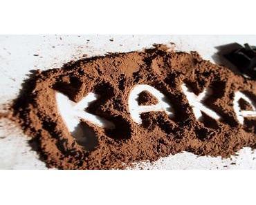 Elfenbeinküste – Regenwald gerodet für Schokolade (Petition)
