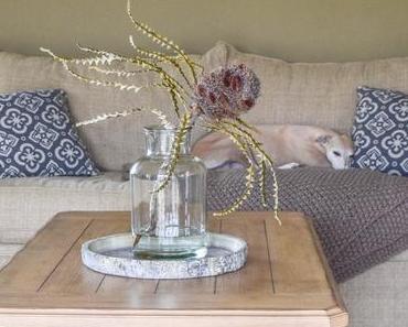 Mein Wohnzimmer, tolle Sofas und die 5-Minuten-Hunde