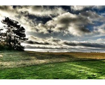 Golfen auf der Sonneninsel Usedom