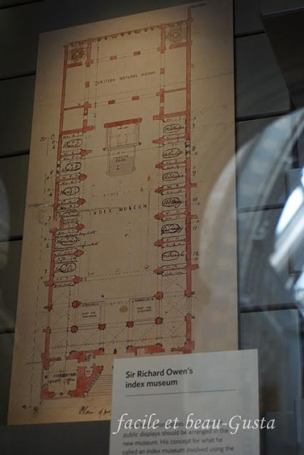 Sir Richard Owen's Index NHM London
