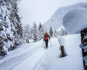 Skitour: Zwei Hasen am Liebeseck