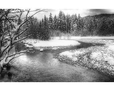 Bild der Woche: Winterträume in schwarz-weiß