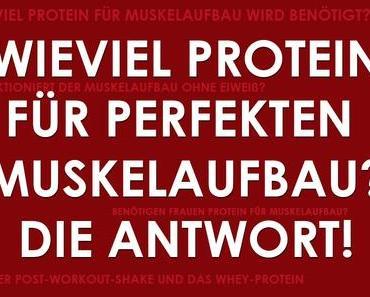 Wieviel protein für perfekten Muskelaufbau? Die Antwort!