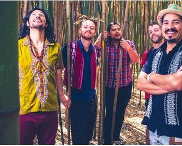 El Flecha Negra – Tropikal Passport // 2 Videos + full Album stream + Tourdaten