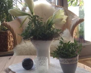 Friday-Flowerday – oder – Winterweiße Amaryllis