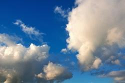 Fischbrötchen, Wolkenfoto, eine Installation, Zwiebelkuchen Wochenende