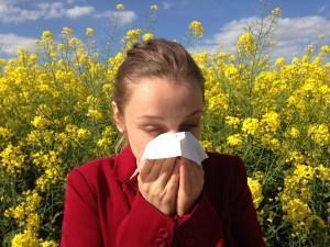 Tierhaarallergie und Allergien natürlich behandeln