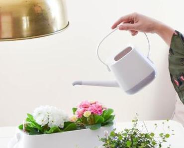 Die Rettung eurer Blühpflanzen und Kräutertöpfe mit YULA Pflanzgefäßen und eine Verlosung