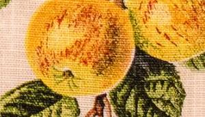 Patrick's Day: Irish Kerry Cake Irischer Apfelkuchen