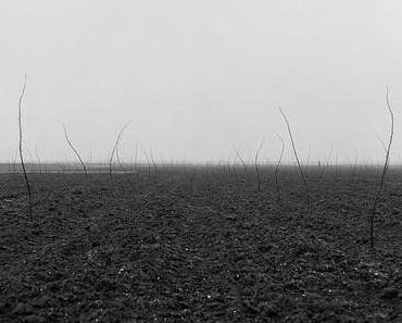 Tomas Riehle — Fotografie
