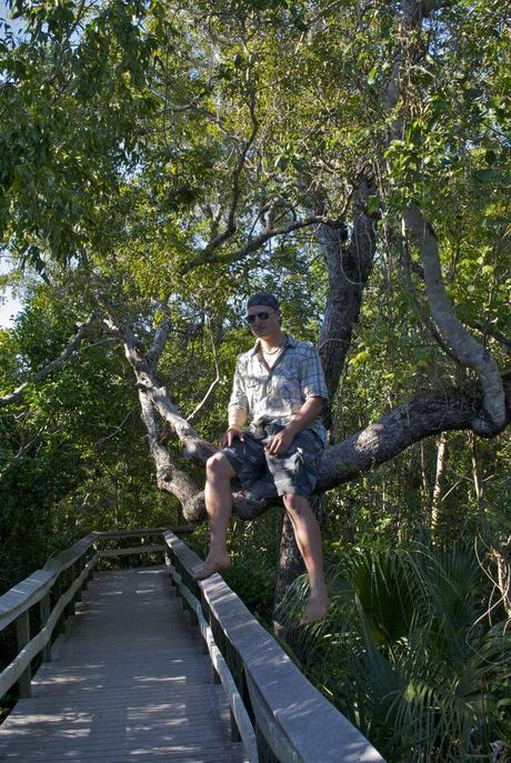 SB – Tag 11 – The Everglades