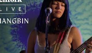 Pitchfork Live: Khruangbin Villain