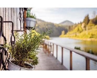 Bild der Woche: Seegasthaus Ötscher-Basis Kräuterwand