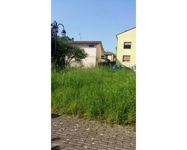 Dolce vita: Die grün-grasige Gemeinde-Geschichte
