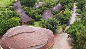Bambusdesign: Beeindruckende Sporthalle Bambus
