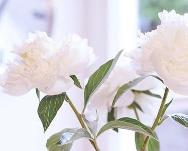 Friday-Flowerday 21/18