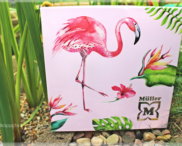 Müller Sommer Box 2018 - Summer in the Jungle Edition