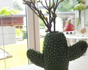 Kaktus, Kaktus