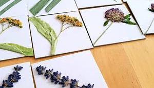 DIY-Tipp Regentage: basteln Pflanzenmemory