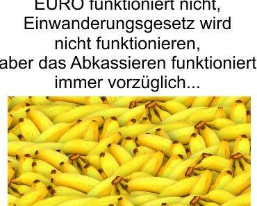Bananenrepublik Deutschland, auf nicht funktionierender Migration soll ein nicht funktionierendes Einwanderungsgesetz folgen