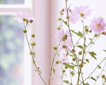 Friday-Flowerday 28/18