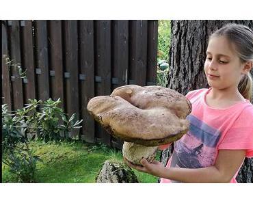 Bild der Woche: Riesen-Steinpilz in Mariazell