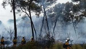 Feuer Costa Pinos unter Kontrolle