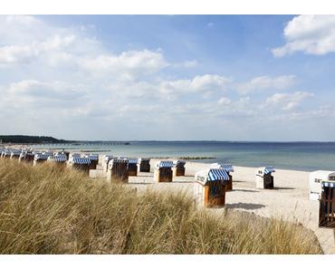 Der ultimative Ostsee Guide
