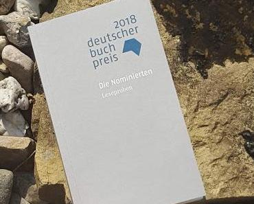 Die Longlist des Deutschen Buchpreises 2018 - diese Titel sind im Rennen