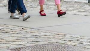 the.daily.pedestrian 256  2018