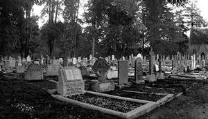 Friedhof Enniskerry