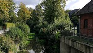 Foto: Blick Wolfsbergbrücke