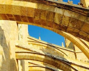 Der Kathedrale aufs Dach steigen