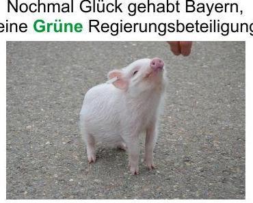Es ist nichts passiert, den Bayern bleibt eine Grüne Landesregierungsbeteiligung erst mal erspart