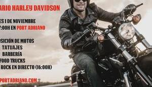 Jahre Harley Davidson