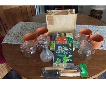 DIY: Gemüsereste nachwachsen lassen
