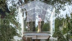 Einzigartiges Baumhaus Glas verbindet Natur Design