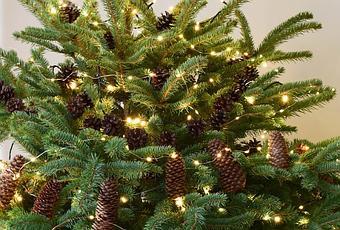 Weihnachtsbaum Natürlich.Natürliche Deko Für Den Weihnachtsbaum Weihnachtsbaumschmuck Basteln