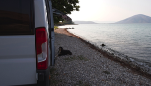 Hund Wohnmobil verreisen