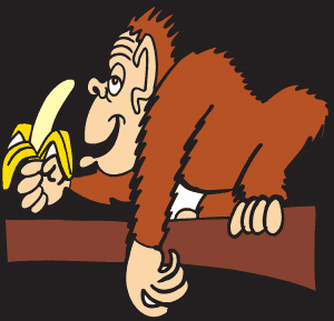 Als der Affe König wurde