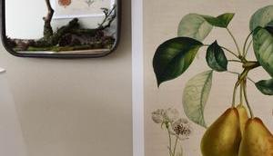 Noch mehr botanische Kalender 2019 Gewinnerinnen!