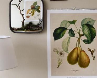 Noch mehr botanische Kalender für 2019 und die Gewinnerinnen!
