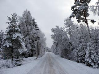 Mit norwegischen Winterschuhen haben Sie im Winter immer warme Füsse