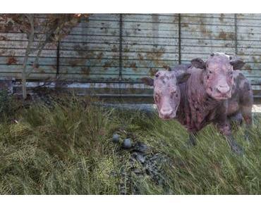 Review: Fallout 76 für PS4