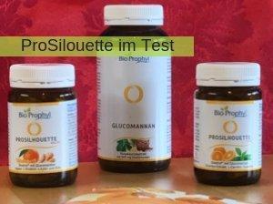 ProSilhouette im Test